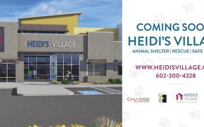 Heidi's Village Updates July 2019