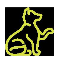 Behavioral Training Icon
