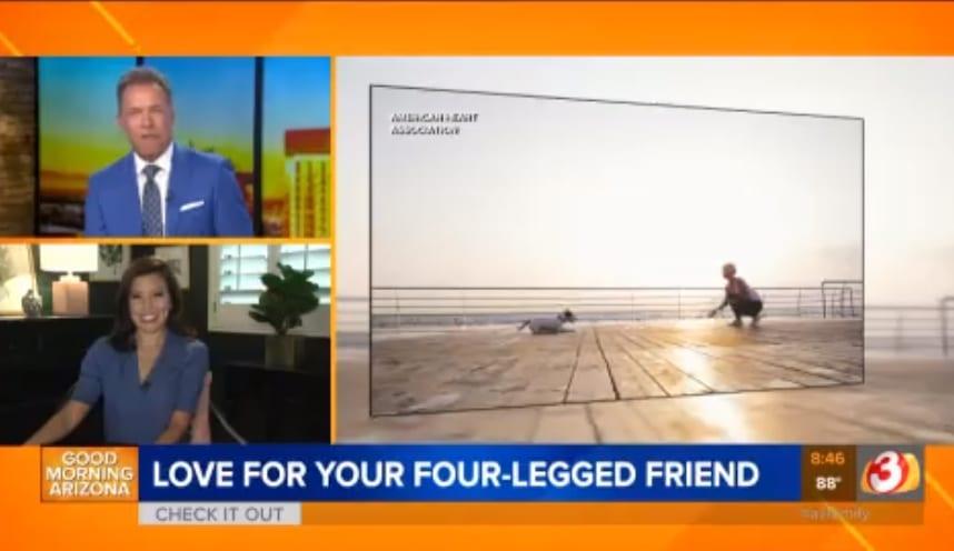 four legged friend video
